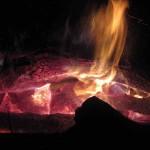 flames in burning log 1