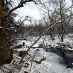 Apple River Cyn State Park, IL 2. Dec. 2012