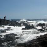 Big Island, between waves 2009