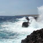 Big Island wave, spray Feb 2009