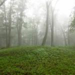 Mound in fog