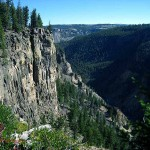 Trail to Osprey Falls, Yellowstone NP, WY. Aug 2012