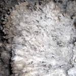 popcorn, crystals Carlsbad Caverns