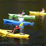 4 kayakers