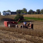 combining soybeans 2
