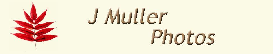 J Muller Photos