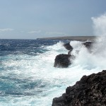 Big Island wave, spray Feb 2009