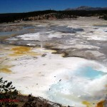 Porcelain basin, Yellowstone, WY. Aug 2012
