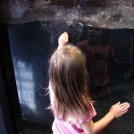 girl at aquarium 2012